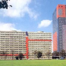 Immobilienverwaltung         Köln
